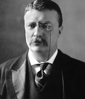 Roosevelt during his Presidency
