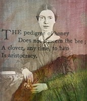 Emily Dickinson's Poem