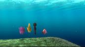 finden Nemo
