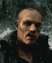 Freindship in Frankenstein