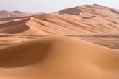 The Desert Region