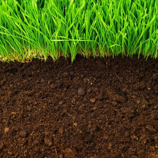 Soil smore newsletters for Organic top soil