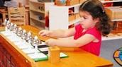 Why Montessori and Language Immersion ?