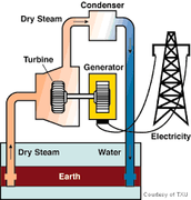 How much electricity does Geo-thermal use