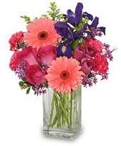 Flowers for Sanctuary