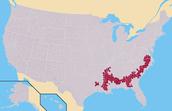 Slave States/Free Areas
