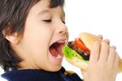 wat zijn de oorzaken van obesitas?
