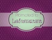 Lead Consultants