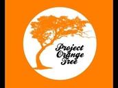 Project Orange Tree