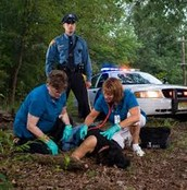 At a crime scene