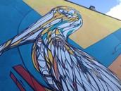 De pelikaan van dzia (Michael Claessens)