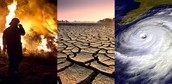 The consequences of climate change.