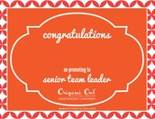 SENIOR TEAM LEADER