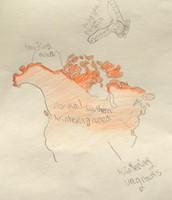 Snowy Owl Regional Map