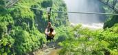 Wild Horizons Gorge Swing, Highwire and adventure slides