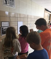 A Gallery Walk with Mrs. Hatz