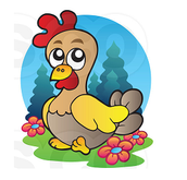 A picture of the chicken