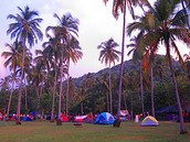 Acampar en el Parque