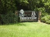 what are the towns and cities in the piney woods?