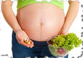 Pregnancy / Lactation
