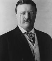 Roosevelt During the Presidency