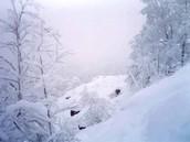 1 день зимы