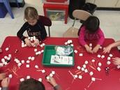 Making habitats with marshmallows