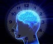Regulate circadian rhythm