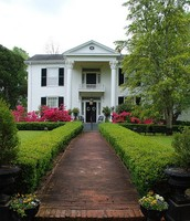 One of the MANY beautiful Antebellum homes