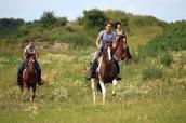 Me gustaba montar el caballo.