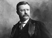 Roosevelt during presidency