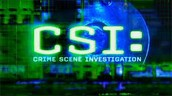 Criminal Scene Investigation