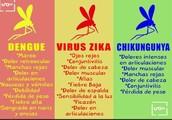 Sintomas del,Dengue,Zika y Chikunguya