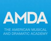 #3 American Musical and Dramatic Academy