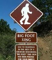 Bigfoot Crossing?