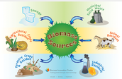 These are the biomass sources!