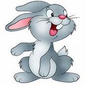 Rabby The Rabbit