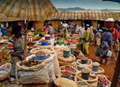 Cameroon's Natural resources and Agricultural Products