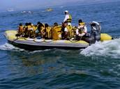 ספורט ימי בכינרת