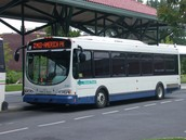 Busses Are One of the Most Common Modes of Transportation