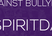 #spiritday