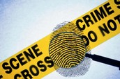 What is a Forensic scientist ?