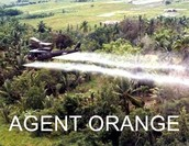 Agent orange being sprayed on crops