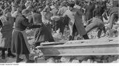 Das Trümmerfrau-Denkmal