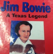 James Bowie book cover