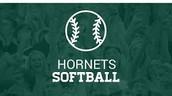 Roswell Jr Hornets Softball Workouts!