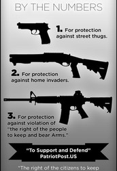 Amendment II Right to Bear Arms