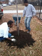 Come help us improve Marvin Gaye Park Greening Center in Ward 7