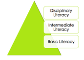 Defining Disciplinary Literacy