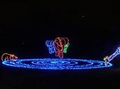 Christmas Lights: Woodland Park Zoo Wildlights